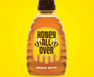 Honey All Over Gruff Rhys