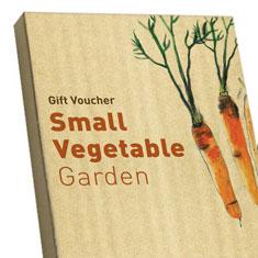 Vegetable Garden Box - Small