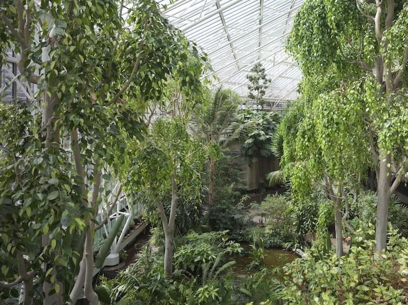 Conservatory © Lee Mawdsley