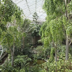 Radiant: London's Secret Garden