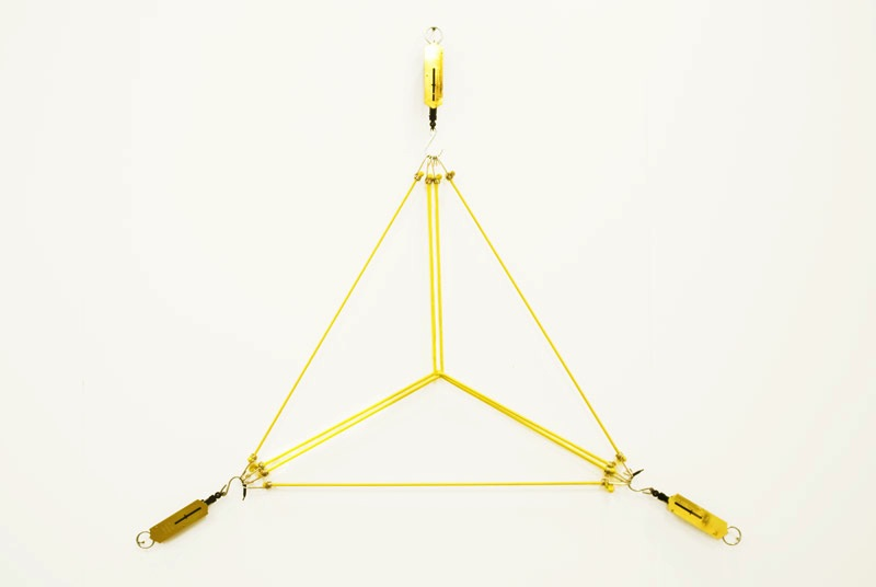 Felippe_Moraes_36kg_of_triangle
