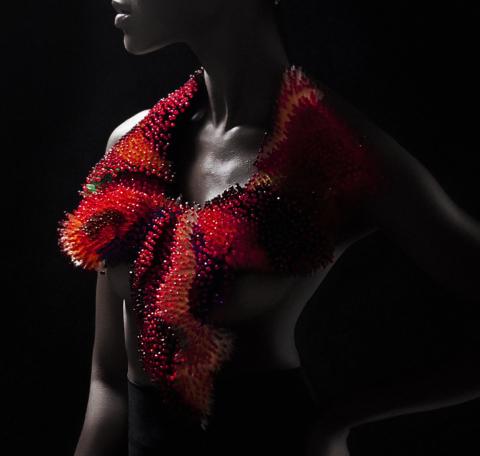 Fashion International…