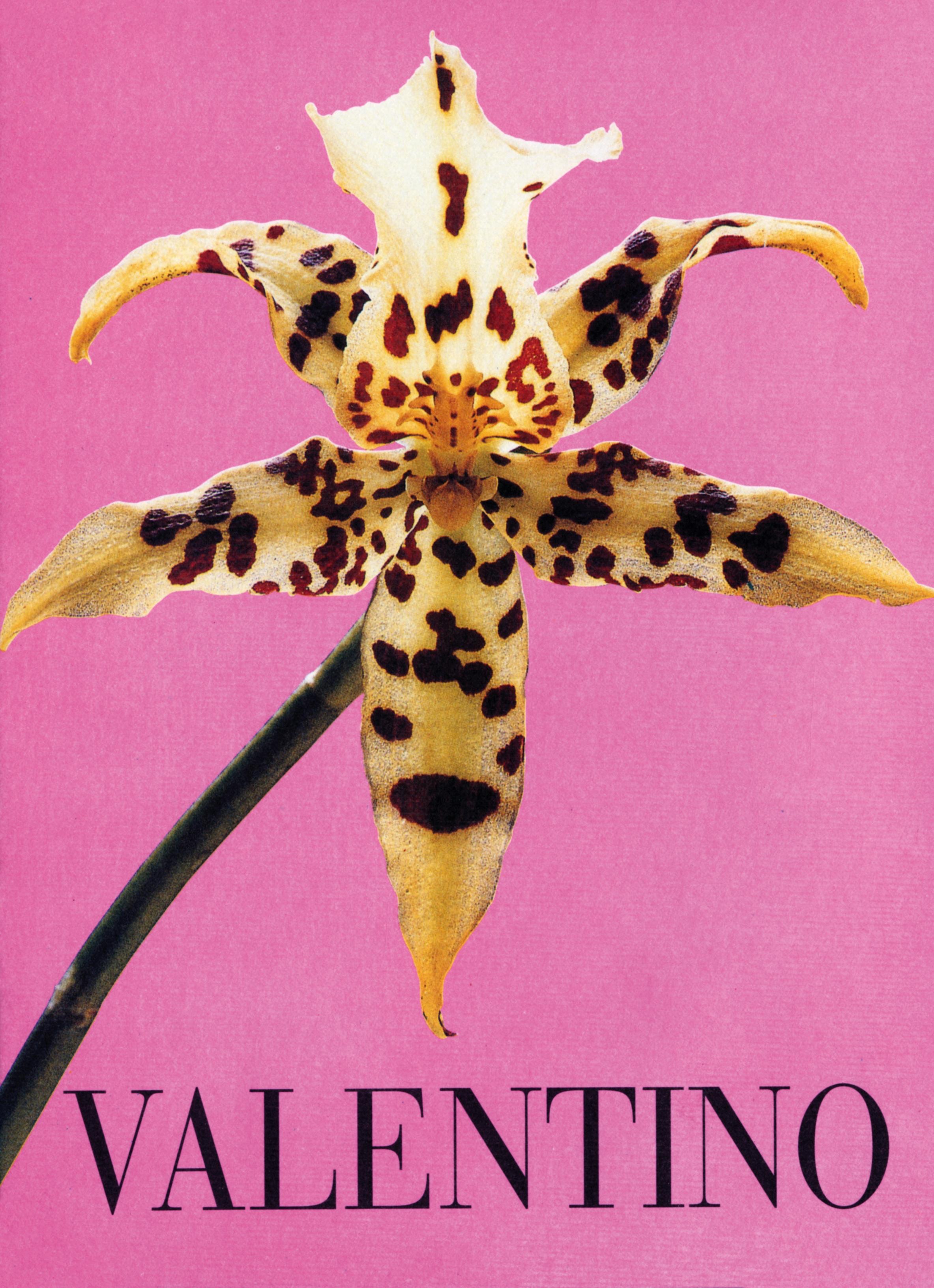 176 VALENTINO