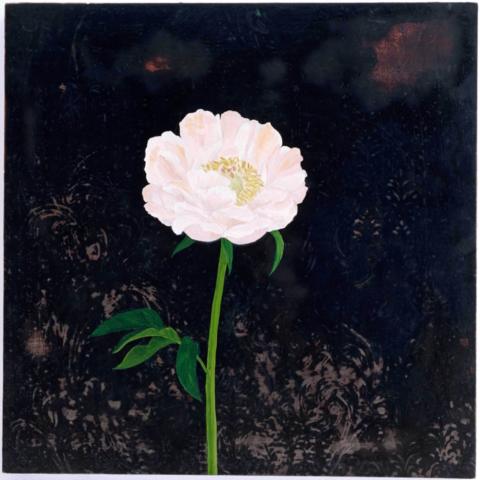 Bloom: Revisiting Flora