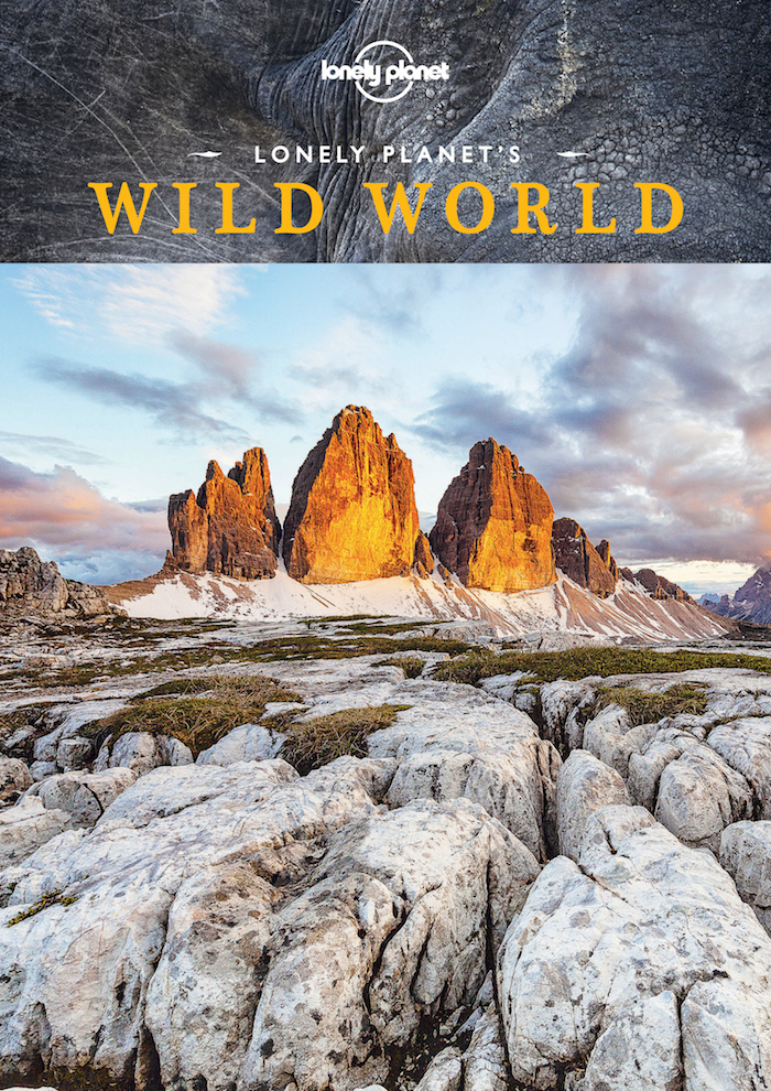 wild-world-1-pic
