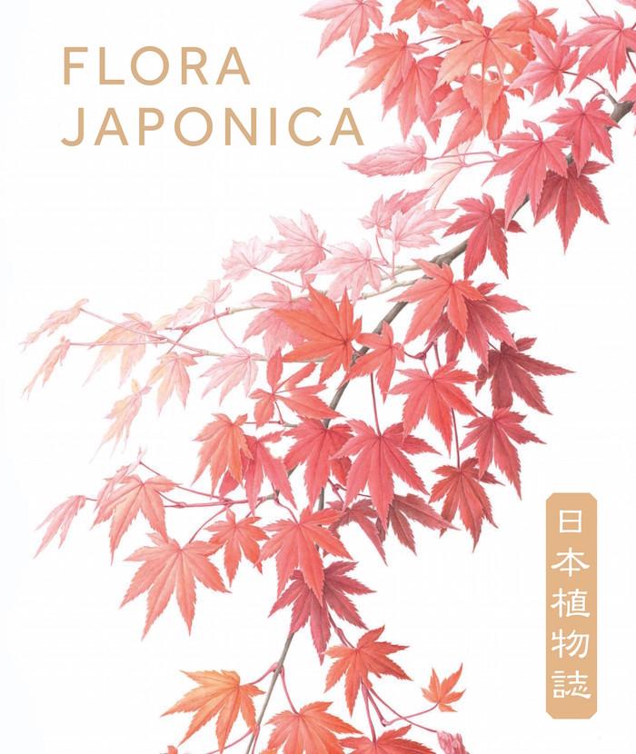 flora-japonica