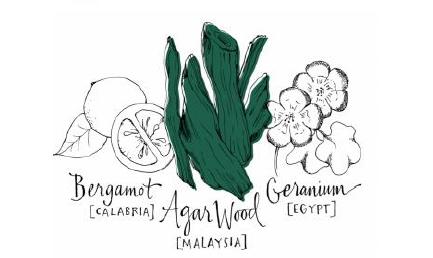 atlier-green