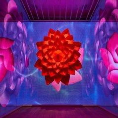 Flowing; Neon Garden: Zoe Bradley's Vivacious New Installation