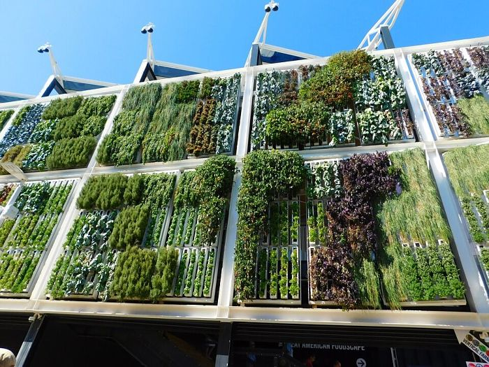 Vertical Garden_opt