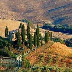 Barebones: Symbols of Tuscany and Spice Island