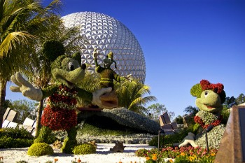 Mickey and Minnie Topiary from the 2008 Epcot International Flower and Graden Festival