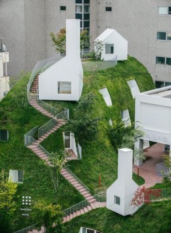 Roofy Garden
